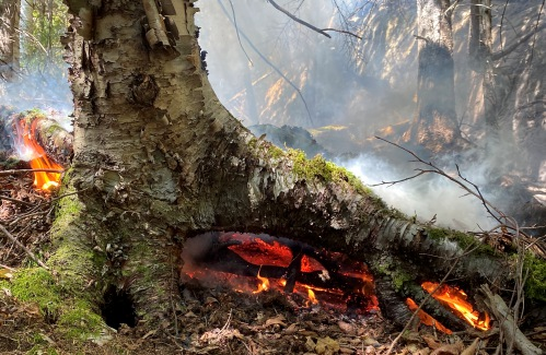 Killington, Vt.,forest fire burns underground for three days, and counting