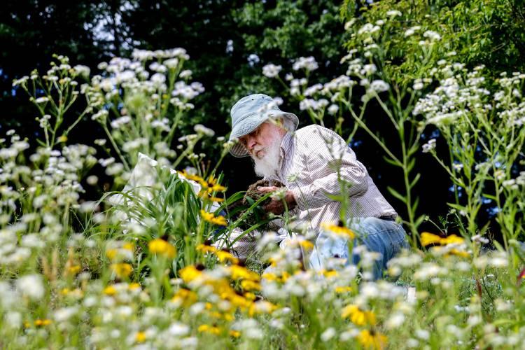 Valley News - Tending the Garden