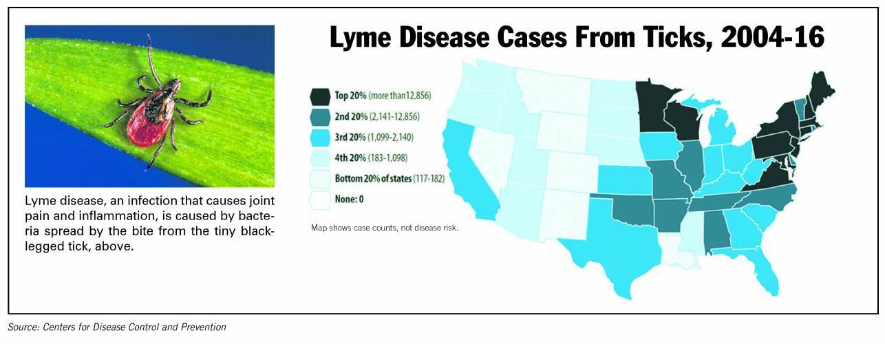 Valley News - Lyme Disease Symptoms Linger